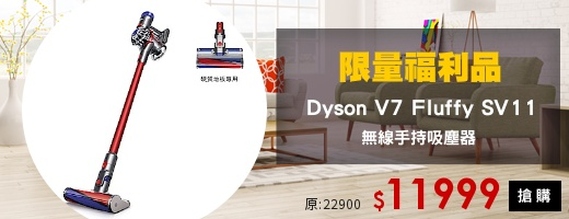 Dyson<br>限量福利品
