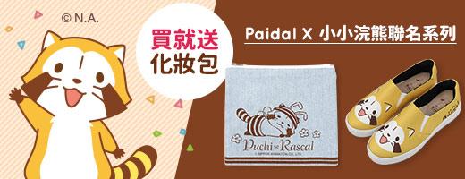 Paidal<br>小小浣熊