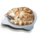 日本Marukan-貓耳朵造型-清涼消暑貓鍋-CT