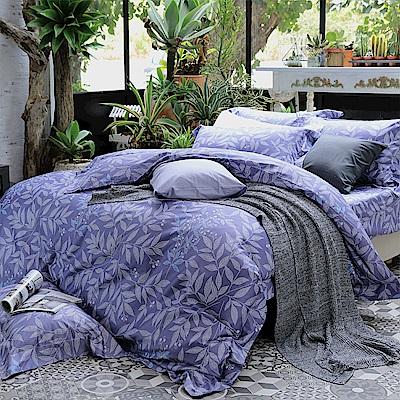 HOYA H Series華爾滋 特大四件式500織匹馬棉被套床包組-配加大被套