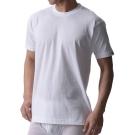 BVD 日本精紡交撚紗系列 圓領短袖上衣(白色) XL