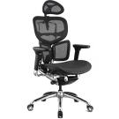 福利品 - aaronation  WISH系列 ~旗艦版~人體工學椅/辦公椅