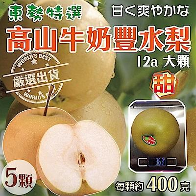 【天天果園】東勢特選高山牛奶豐水梨(每顆400g) x5顆