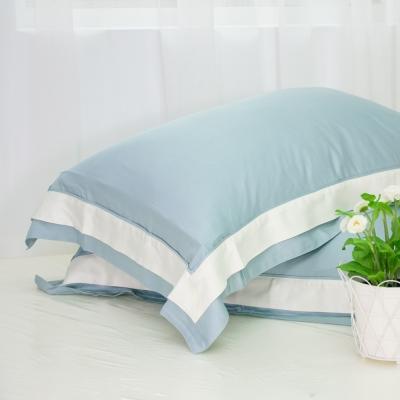 鴻宇HongYew 100%奧地利天絲枕套2入 松石綠