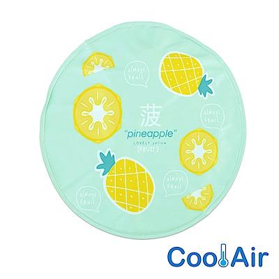 CoolAir 涼感降溫冰涼墊/坐墊 (鳳梨)