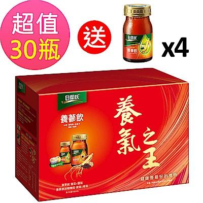 白蘭氏 養蔘飲 30瓶組(60ml/瓶) 贈冰糖燉梨 4瓶(60ml/瓶)