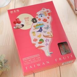 新東陽 台灣果品荔枝果凍(500g)