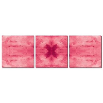 123點點貼- 三聯式無痕創意壁貼 -蝴蝶標本30*30cm