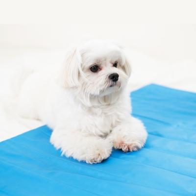 米夢家居-嚴選長效型降6度冰砂冰涼墊(50x150CM)10公斤以上中大寵物用-2入