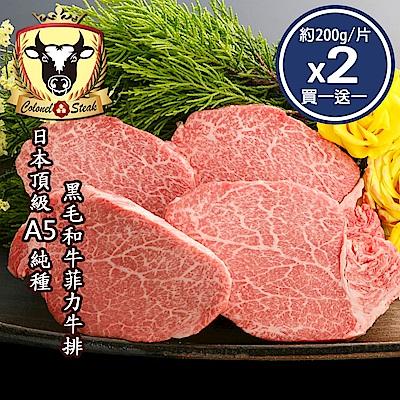 (上校食品)買一送一 日本頂級A5純種黑毛和牛菲力牛排2片組(共4片-約200g/片)