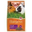 Burgess伯爵 高機能兔飼料-天竺鼠(黑莓&奧勒岡葉)2kg 2入