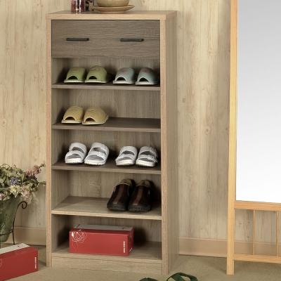 Asllie凱莉多功能鞋櫃/置物櫃/書櫃60x30x120cm