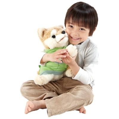 PINOCCHIO-愛撒嬌的小柴犬