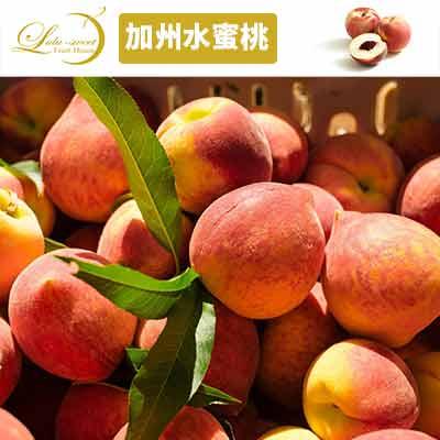 【甜露露】美國加州水蜜桃13-15顆入宅配盒(3.1kg±10%)