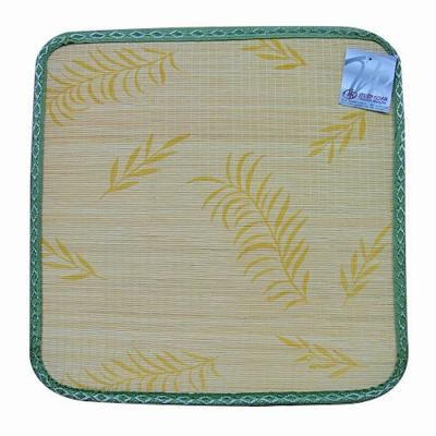 范登伯格 - 艾蒙 天然色織竹坐墊 四入組 (兩色可選) (50x50cm)