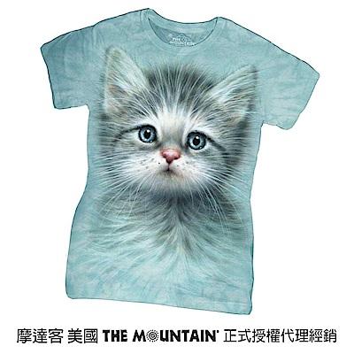 摩達客 美國進口The Mountain  藍眼小貓 短袖女版T恤