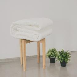 翔仔居家 單人夏季棉被 薄被胎 台灣製 可水洗 用於薄被套內可當涼被使用