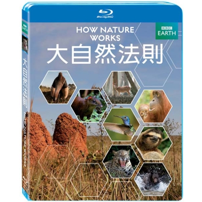 BBC 大自然法則 How Nature Works 藍光 BD