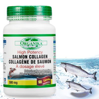 Organika優格康-鮭魚膠原蛋白膠囊500mg(90顆) @ Y!購物