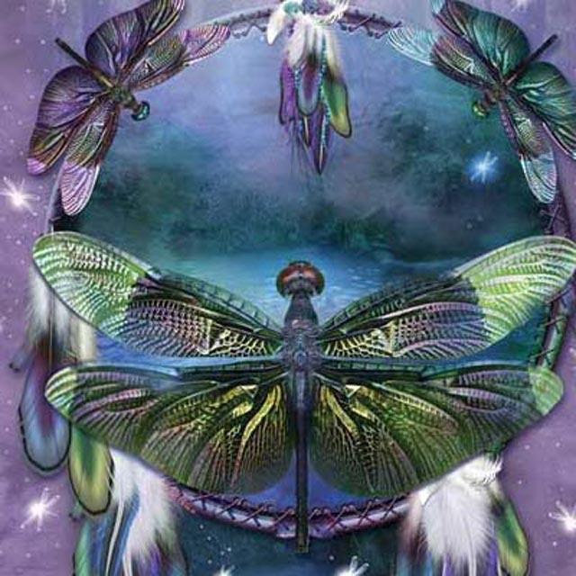 摩達客 美國進口The Mountain 蜻蜓捕夢 純棉環保短袖T恤