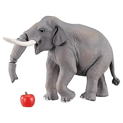任選多美動物園 AS-33 印度象_AN98150 TAKARA TOMY