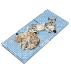 日本Marukan 多貓用超涼舒適 保冷涼感軟墊(CT264)