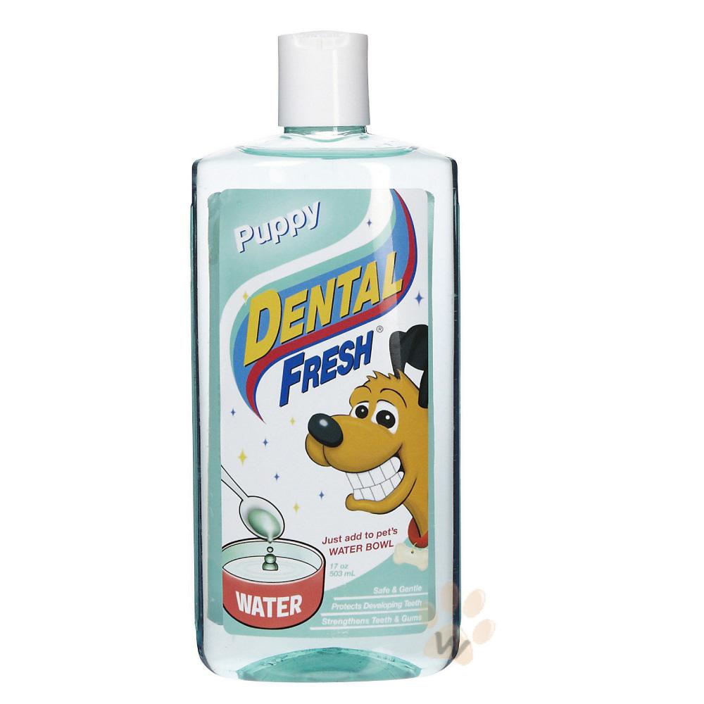 美國DENTALFRESH 犬用幼犬潔齒液17oz 1入