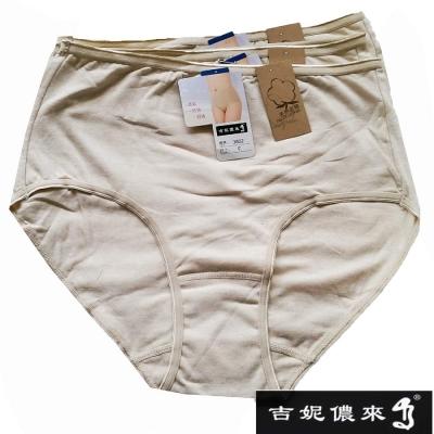 吉妮儂來-6件組舒適彩棉加大尺碼媽媽褲-尺寸FRE