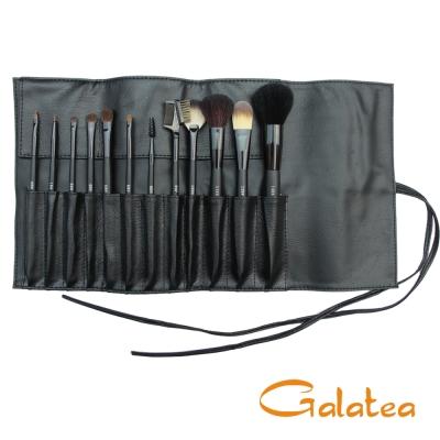 GALATEA葛拉蒂鑽顏系列- 長柄黑原木12支裝專業刷具組