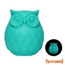 Dreams Owl 聰明貓頭鷹LED感應夜燈- 藍