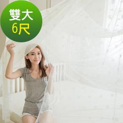 凱蕾絲帝 大空間專用雙人加大6尺針織蚊帳-開單門