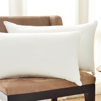 Cozy inn 抗菌透氣健康枕(2入)
