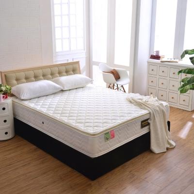 Ally愛麗 正四線3M防潑水-抗菌蜂巢式獨立筒床墊-雙人加大6尺