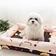 【奶油獅】台灣製造-保暖布套可拆洗-搖滾星星寵物記憶床墊-特大(25kg以上適用)卡其咖啡 product thumbnail 1
