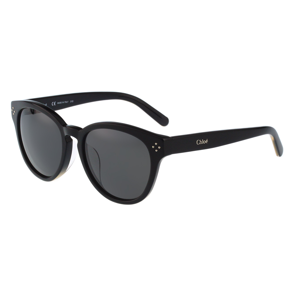 CHLOE太陽眼鏡 萬年不敗經典款(黑色)CE699SA-001