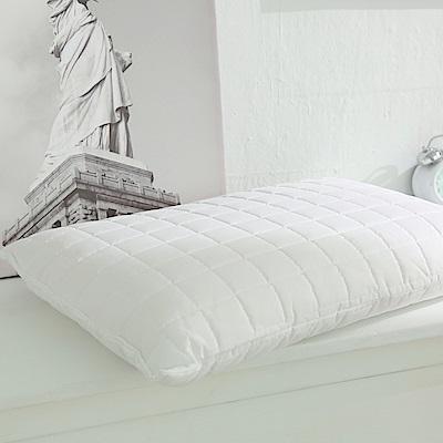 PB皮爾帕門 特殊防潑水天然乳膠枕 平面型 <b>2</b>入組