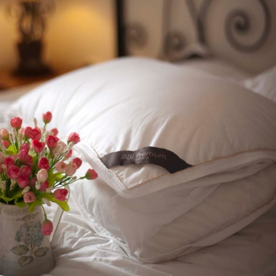 BBL法國可調節式JIS95/5機能羽絨枕(一對)