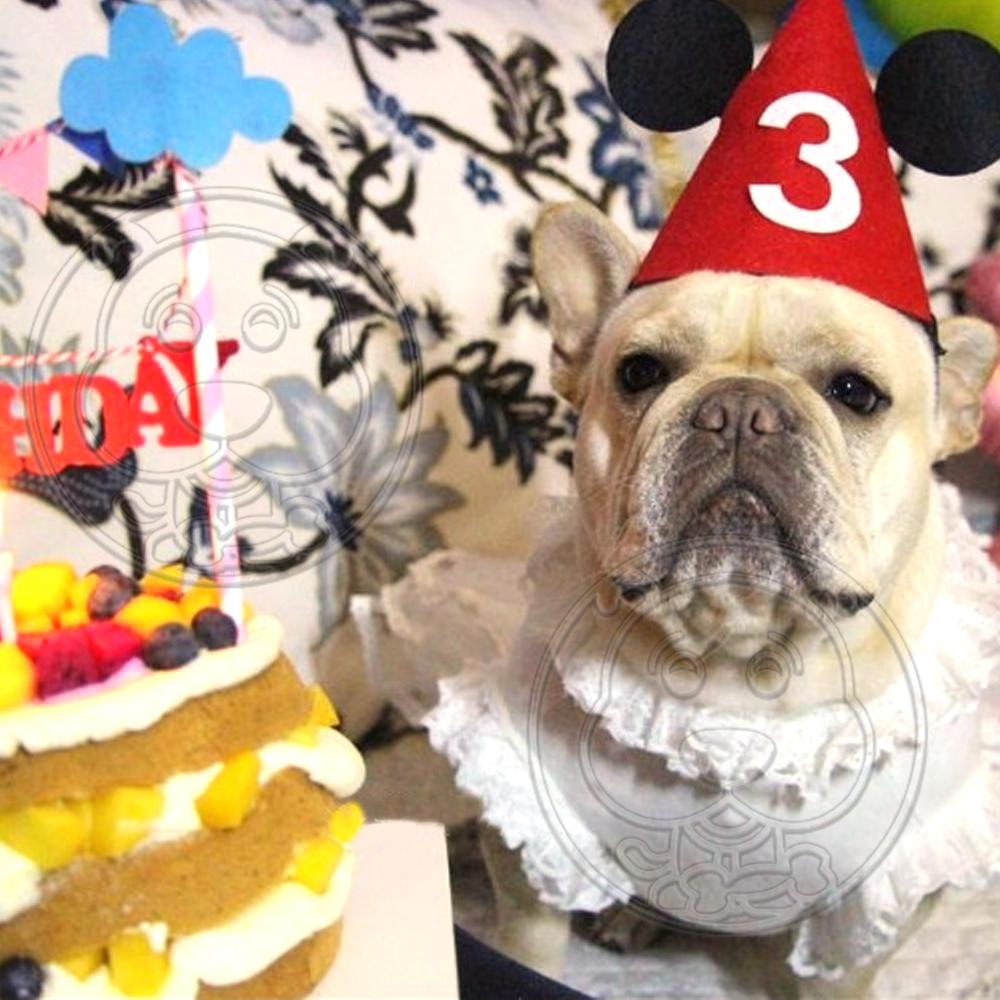 dyy》寵物帽子狗狗貓咪生日派對帽頭飾賣萌可愛頭套 隨機出貨