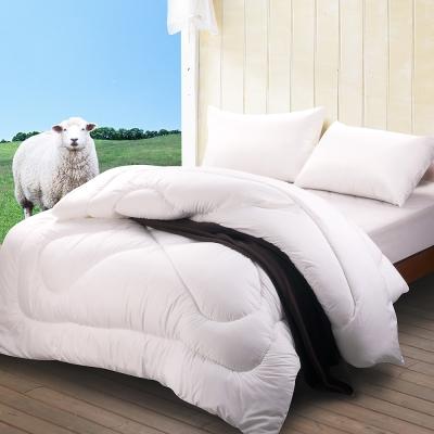 法國Jumendi台灣精製高密度防蹣抗菌潔淨羊毛被-雙人