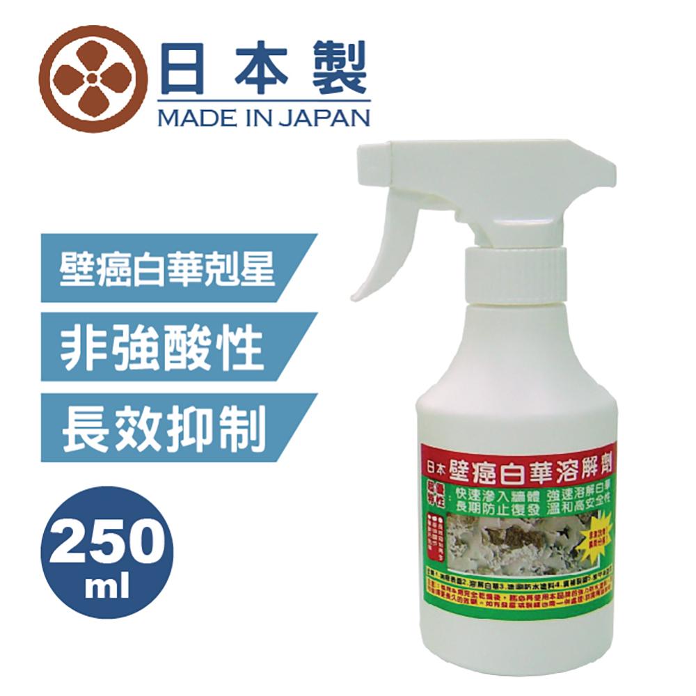 日本壁癌白華溶解劑250ML