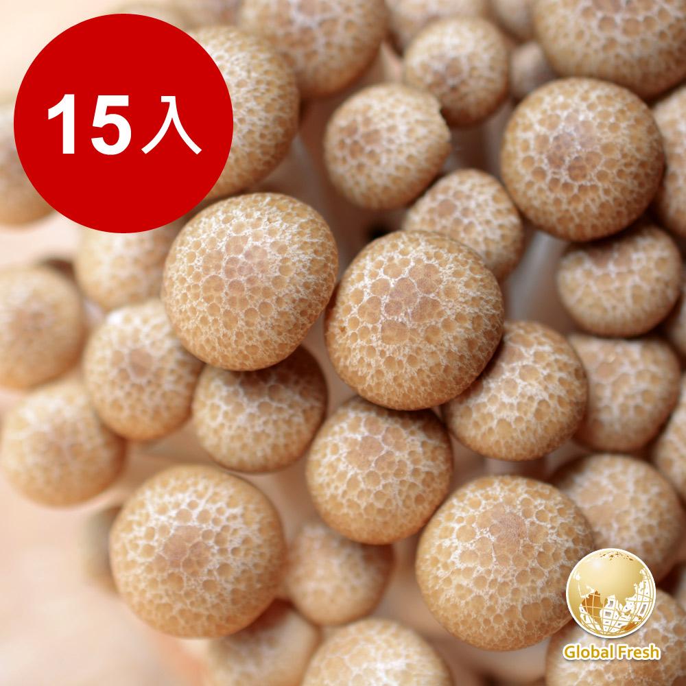 Global Fresh-力信國際 日本長野鴻喜菇(200g)15包