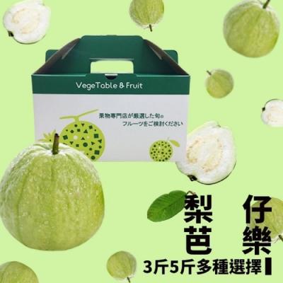 果之蔬*彰化溪洲梨仔芭樂(5台斤+-10%)