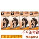 日本柳屋雅娜蒂 花草染髮霜(第1劑40g +第2劑40g)