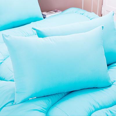 日本馬卡龍羽絲絨發熱枕2入~蒂芬妮藍+紫藍色