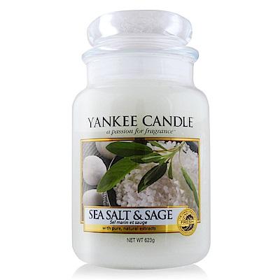 YANKEE CANDLE香氛蠟燭-海鹽與鼠尾草 Sea Salt & Sage623g