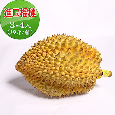 愛蜜果 泰國進口特大榴槤3-4入原裝箱(約19斤/箱)