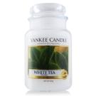 YANKEE CANDLE香氛蠟燭- 白茶623g