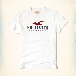 Hollister HCO 短袖 LOGO T恤 白色 418