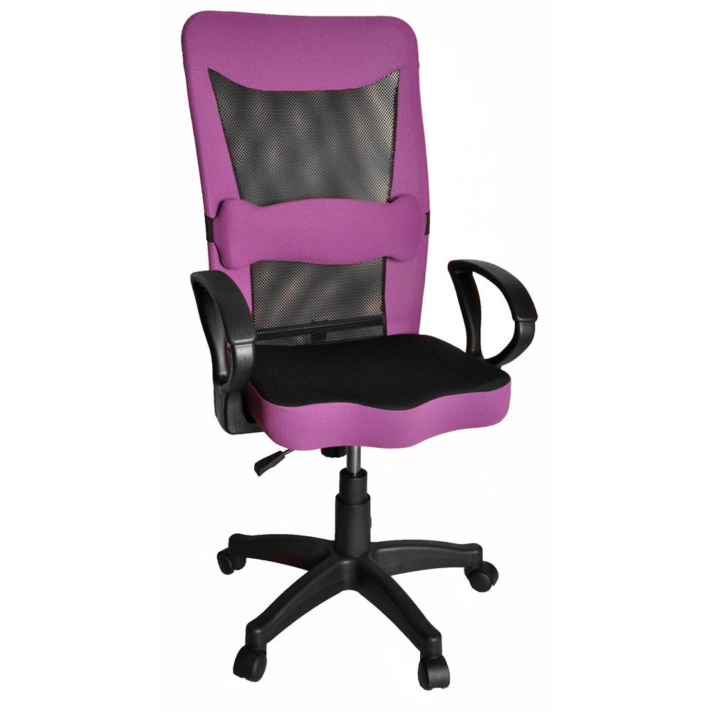 Luffy透氣高背辦公椅/電腦椅-5色(附雙魚造型護腰枕)