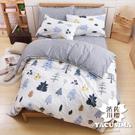 日本濱川佐櫻-北歐小品 台灣製雙人四件式精梳棉兩用被床包組